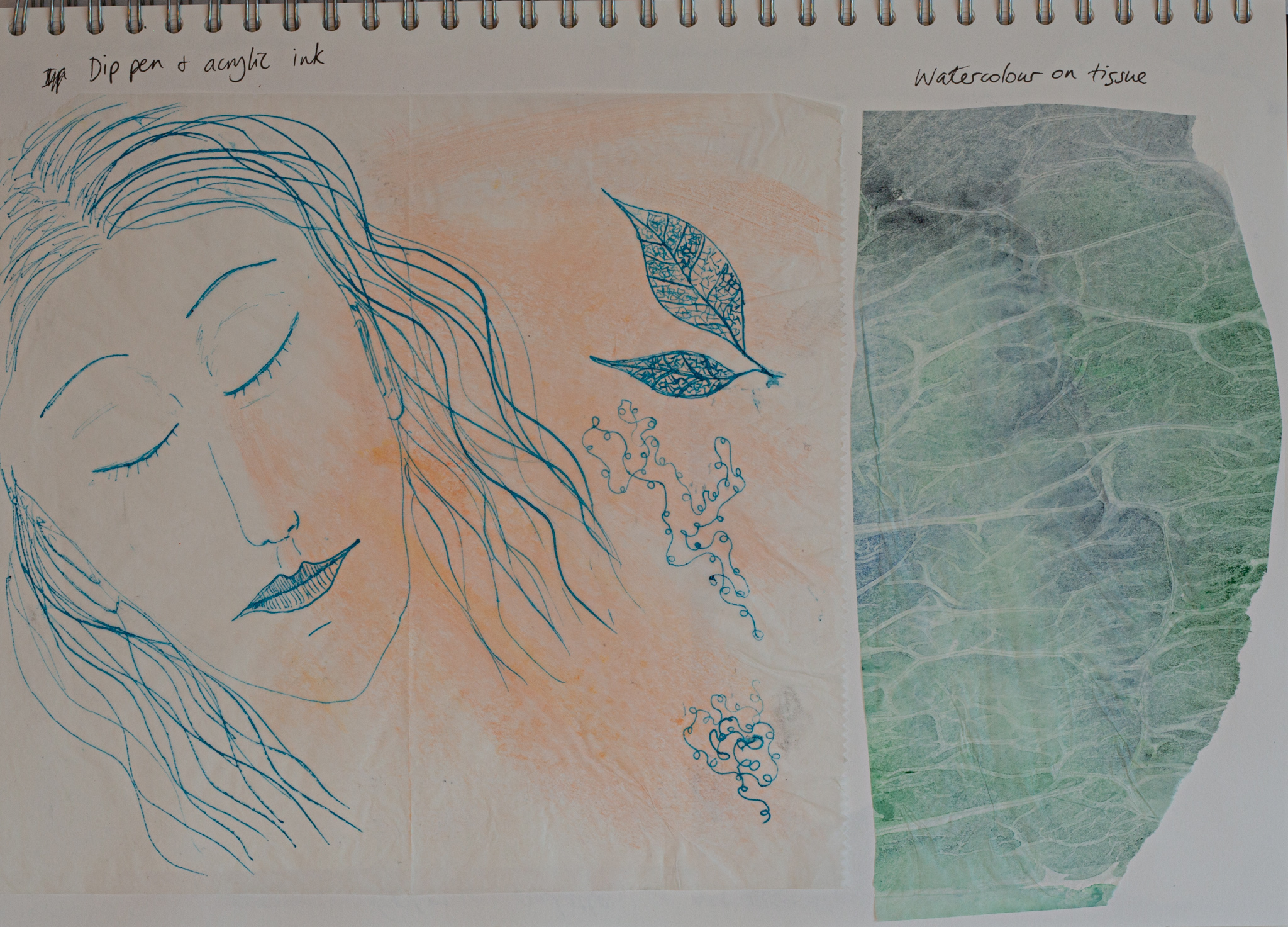 Are blue and green the best colour palette for depicting meditation? Leaf fractals work well drawn with dip pen and ink.